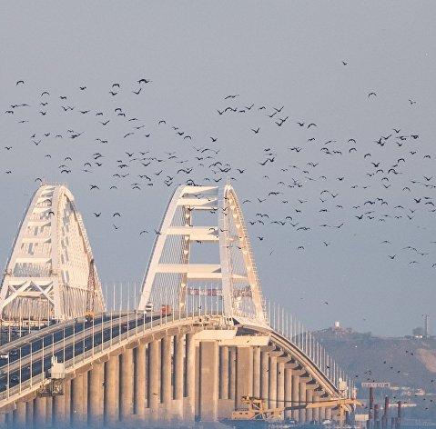 Эксперты рассказали, когда ожидать снижения цен на Черноморском побережье