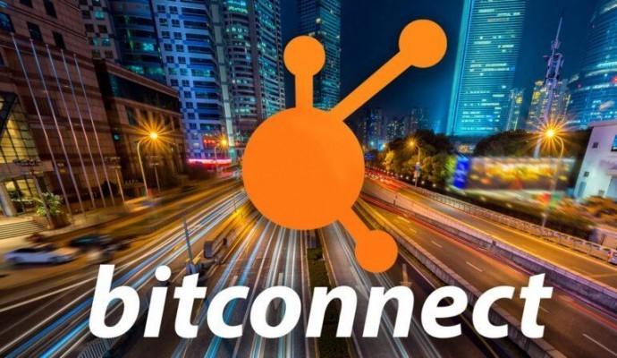 Бывший директор Bitconnect признал вину