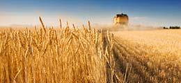 Росстат зафиксировал обвал сельского хозяйства в России